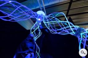 Contemporary art in Venice The Biennale